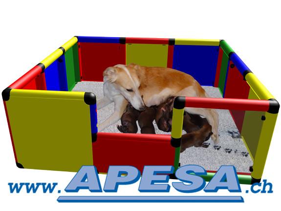 Welpen-Wurfbox Wurfkiste für mittlere bis grosse Hunde inkl. Bälle